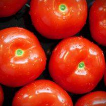 как сохранить помидоры свежими на зиму